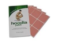 hoodia slimming / by Diet Buyer