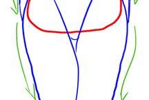 Cuerpos Femeninos