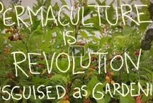 permaculture stuff