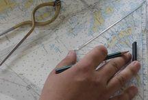 Merenkulkuala / Opiskele merenkulun ammattilaisesi Ekamissa! Suorittamalla merenkulkualan perustutkinnon voit valmistua laivasähköasentajaksi, korjaajaksi, vahtikonemestariksi tai vahtiperämieheksi. Yrityksille ja aikuisopiskelijoille tarjoamme erilaisia pätevyyskoulutuksia. Katso Ekamin koko tarjonta: http://wilma.ekami.fi/browsecourses.