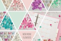 Planners, Journals, and More!