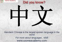 Mandarin Chinese / Mandarin is the largest spoken language in the world, spoken by over a billion people. With the growing economy, it is becoming necessary to know the language for your business needs.