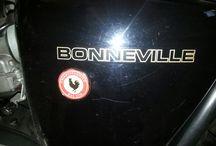 Bonneville Passion