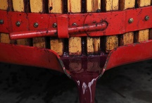 Barossa Winemaking / by Barossa Dirt