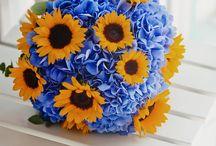 Wedding Flowers & Decorations / Work samples of my associate Wedding Decorator.  www.mykonos-weddings.com