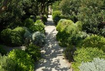 Ornamental Garden and Landscaping