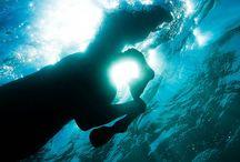 Photography | Underwater
