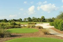 Ft. Myers/Sanibel Golf / The Fort Myers, Sanibel and Captiva area is home to more than 130 public and private golf courses. These are some of our favorite area courses.