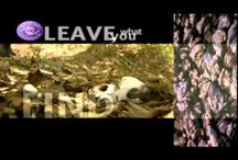 Leave No Trace / by Sleeping Bear Dunes National Lakeshore