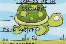 tecnica tortuga