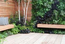 Living Walls Garden Design / A selection of garden designs with living walls