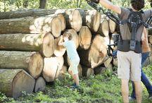 Hollands Hout / Bij Bruynzeel houden we van hout. Hout is onze passie en de historie van ons bedrijf. Daarom kiezen wij in samenwerking met Staatsbosbeheer voor Hollands hout. Hout uit onze Nederlandse bossen. Bos waar we dagelijks van genieten en waar we nog generaties van willen genieten. Met een Bruynzeel vloer van Hollands hout kun je ook thuis genieten van het bos, op je eigen vloer van Hollands hout.