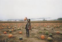Pumpkin Horror Story / because my husband does not like pumpkin.