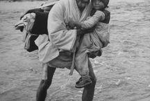 1950.한국