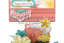 Fathers/Mothers day cards