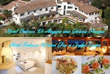Wishes from Hotel Balocco