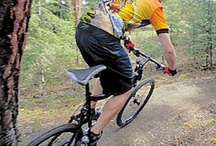 Holiday Bicycle Tour Guide - Australia and Worldwide / Holiday Bicycle Tour Guide