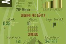 Infografías Cultivos / Infografías de cultivos, datos de producción, consumo, comercio, huella hídrica y valores nutrimentales, 2013.