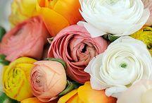 Floral designs / by Debbie Dusenberry