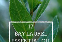 Healing - essentials oils