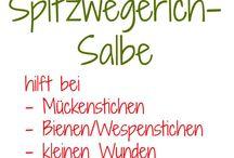 Spitzwegerich - Salbe