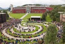 Norveç Üniversiteleri