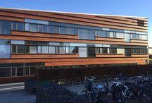 Nærum Gymnasium / Nærum Gymnasium. Flot og velholdt træ behandlet med Gori.