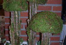 Bomen Voor Kerst huisjes