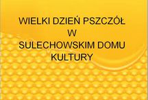DK Sulechów Wielki Dzień Pszczół