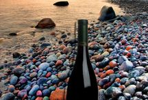 NVWCT Wine Pick of the Week  / Each week we pick a wine that is our favorite in Wine Country!