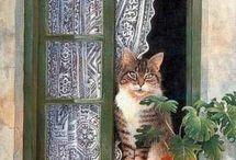 Pencere Önü Kedileri / Kedi Sefası