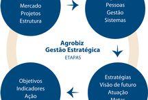Metodologias Agrobiz