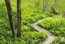 Boardwalks, bridges and outdoorsteps