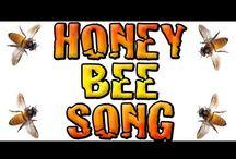 Honey bee song