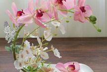 Arranjos com orquídeas!