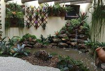 jardim/garden