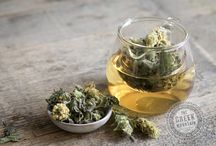 Our new blend / Introducing our soothing lemony blend — Shepherd's tea, lemon balm, verbena & camomile —from The Greek Mountain