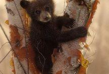 Animals in Art 5b