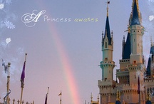 PixieGraph / A creative mashup of WDW inspired photography, haiku & design