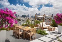 North Bondi terrace inspiration