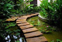 HOUSES - dreamy gardens