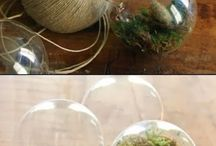 DIY: Light Bulb Crafts