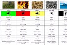 Chinese Voedingsleer / Informatie over Chinese voedingsleer volgens de vijf elementen