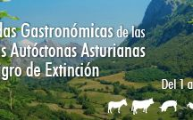 JORNADAS GASTRONÓMICAS/ MENÚS ESPECIALES