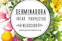 Germina tus ideas / Ideas, Proyectos & Negocios