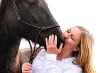 Tierschutz / Mit unserem Pferdeportal 4my.horse möchten wir Dich – und Leute, die wie Du denken – auffordern, noch ein bisschen mehr zu tun. Dich zu verbinden mit anderen Gleichdenkenden, denen das Wohlbefinden des Partners Pferd wichtiger ist als schnelle Siege mit einem lebenden Sportgerät. Die statt zu schreien und zu schlagen lieber einmal mehr hinhören und be-greifen.