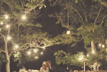 Dream Wedding / by Anna M