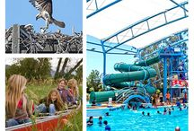 Things to do with the kids | Moreton Bay Region