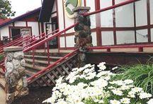 Summer at Otsego / Beautiful views and scenery at Otsego!