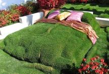 DECOR - Jardins e Sacadas